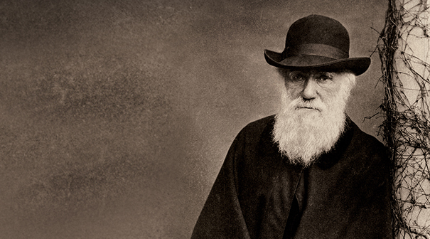 Why Charles Darwin would hate your web site