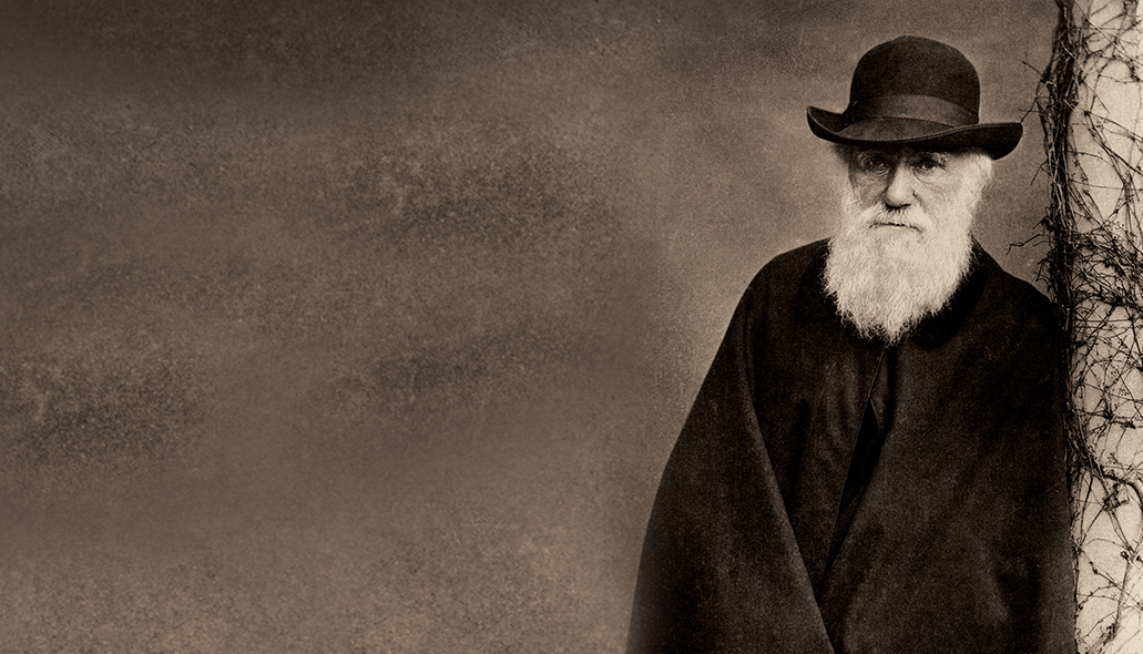 charles darwin hates your website
